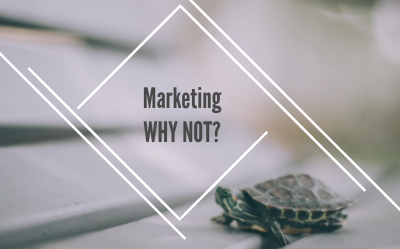 Marketing Why Not - LGM consulting